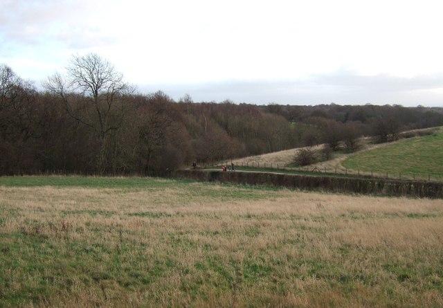 Farmland and woodland, Colton