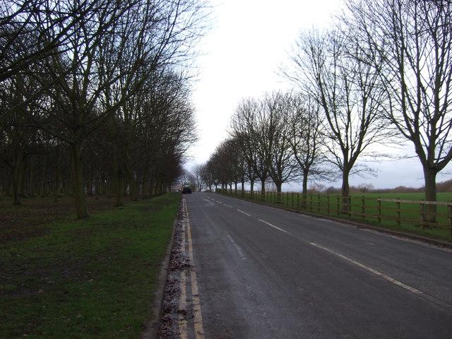 Temple Newsam Road