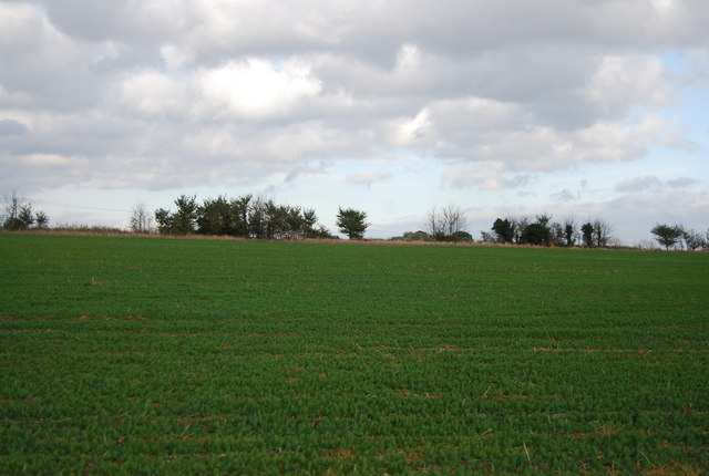 Farmland, Cuckold's Green Rd