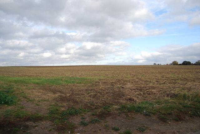 Farmland by Cuckold's Green Rd