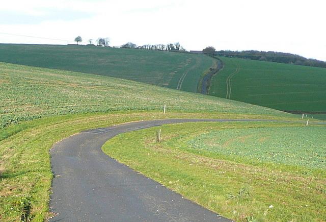 Bridleway near Vicarage Copse