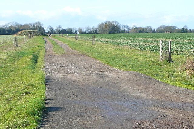 Bridleway towards Hannington