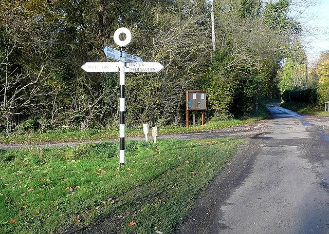 Junction at Lynwood