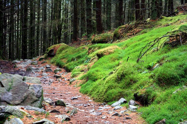 The Merrick footpath
