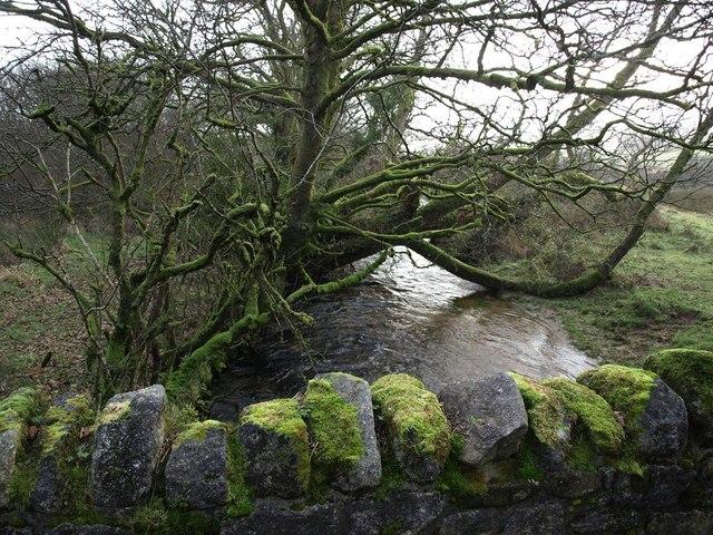 The West Webburn River at a bridge near Grendon Cottage