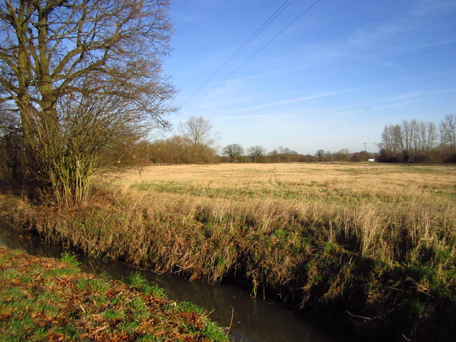 Tudeley Brook