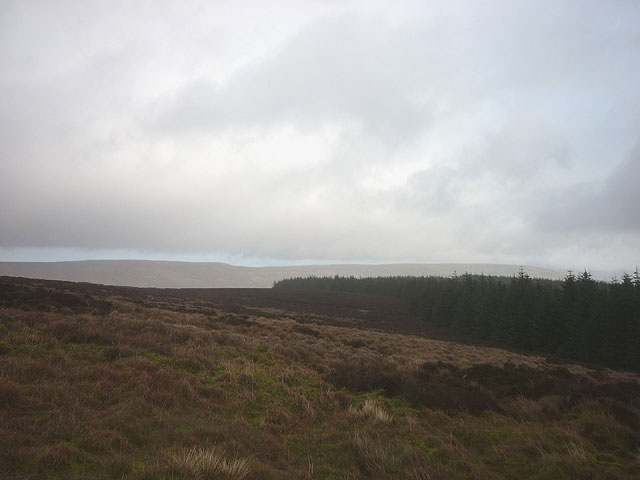 Rough moorland above the forest, Low Greenfield Lings