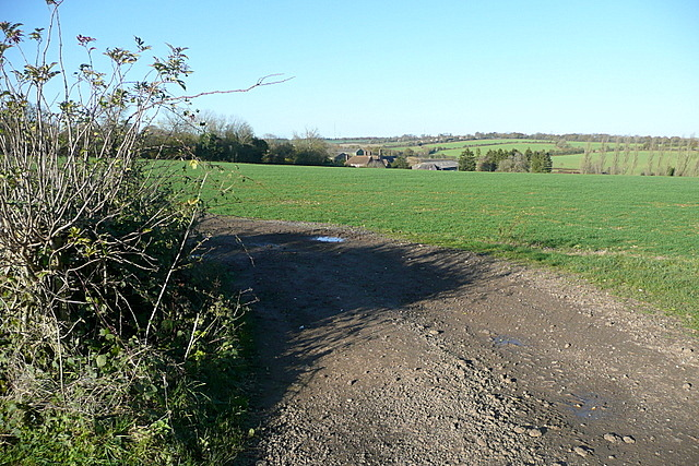 Towards Freemantle Farm