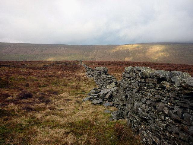 Moorland wall, Cam Rakes (or Low Green Field Lings)