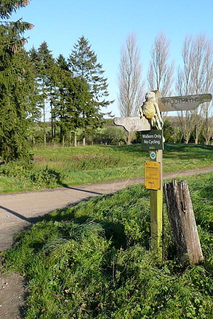 Junction at Freemantle Farm
