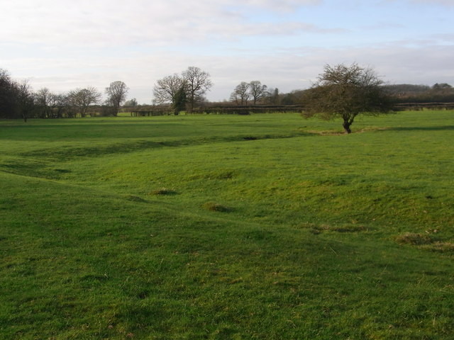 Old stream course visible throughout the field
