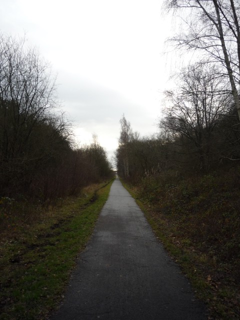 York to Selby cycle path near Stillingfleet