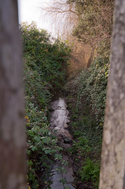 The view downstream on Coney Gut from a footbridge near Town Walk