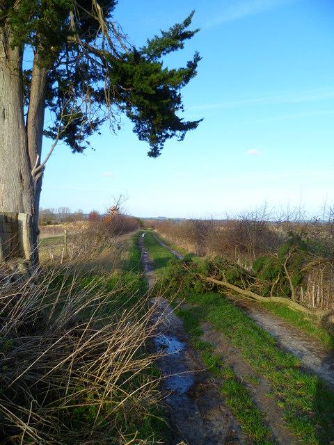 Footpath north from Hook Farm