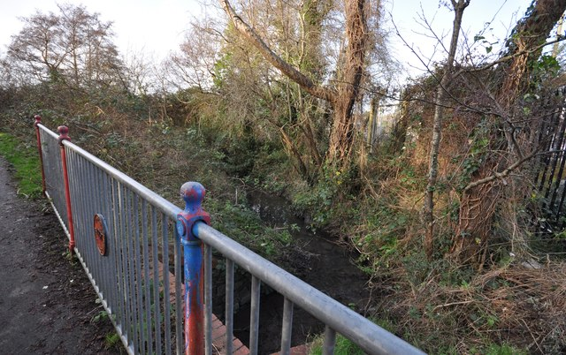 Looking downstream on Coney Gut from a bridge on Hollowtree Cycleway
