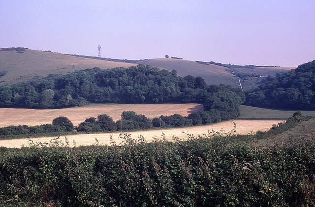 Looking towards Butser Hill