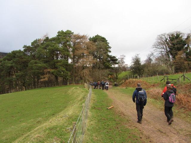 Taff Trail in Glyn Tarrell