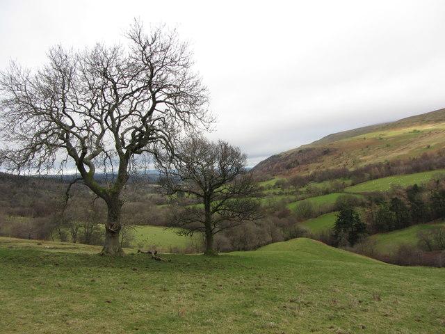 View down Glyn Tarrell