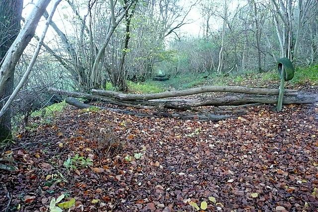 Footpath below Freemantle Park Down