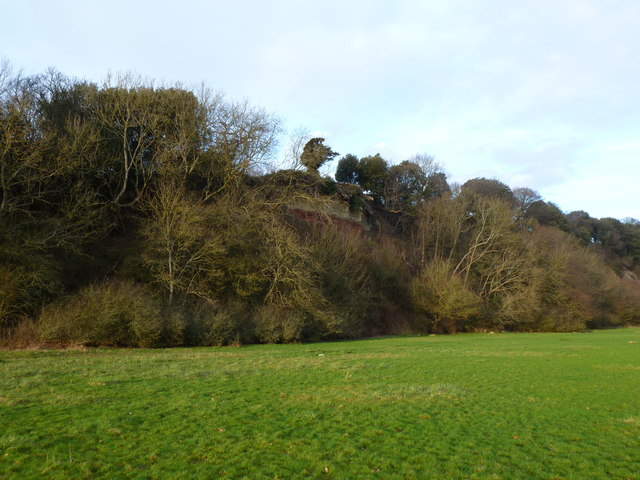 Sedbury Cliffs