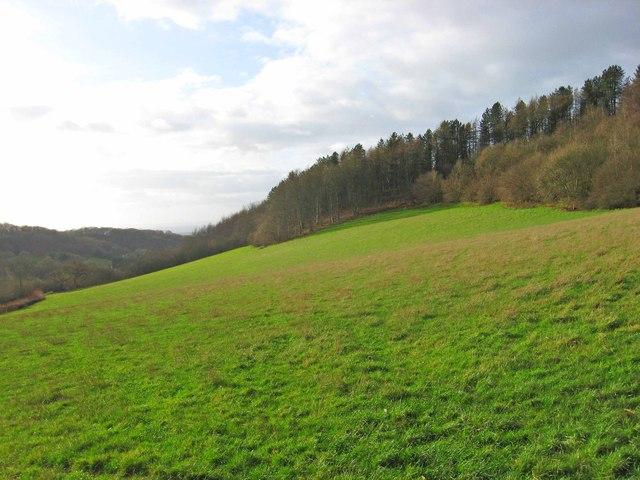 Clent Hills, near Clent