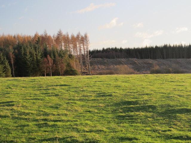Farmland and Eliza Plantation