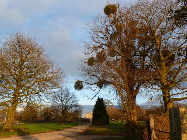 Meeting of the ways, Sedbury Park