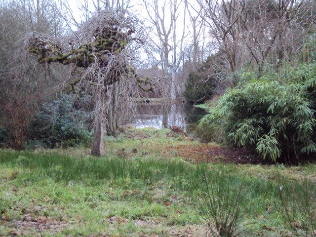 Cooper's Pond