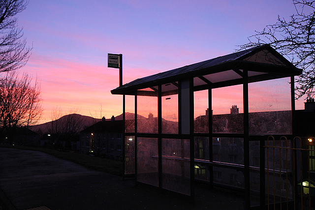 A bus shelter in silhouette