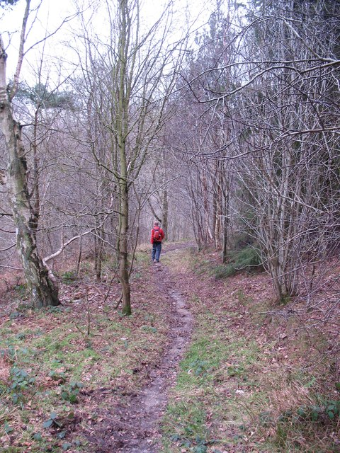 Path into Goodhams Dale