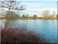 SU0436 : Brockbank Lake by Jonathan Kington
