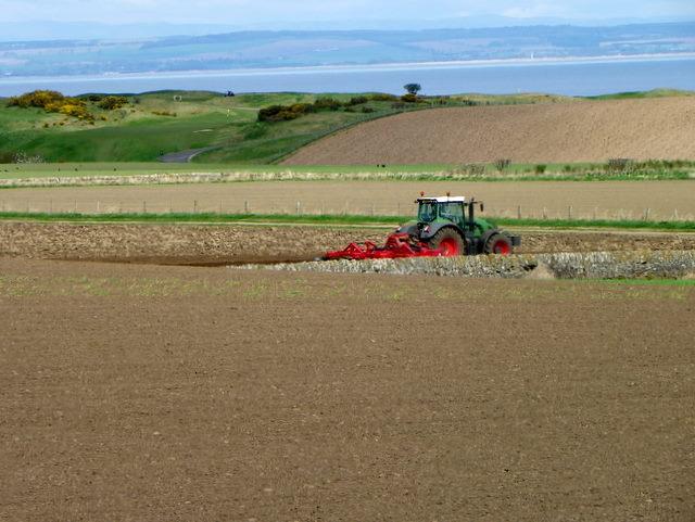 Tending the land, Boarhills