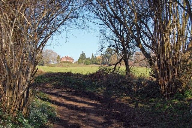 Footpath going to Damerham church