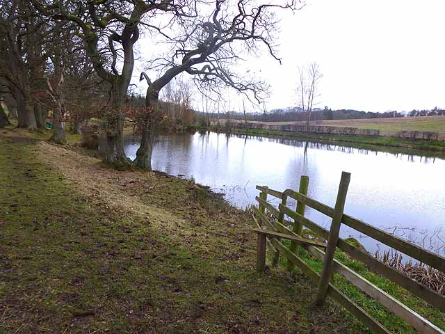 Pond below Shield Hall Farm