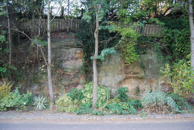 Cliff foot garden, All Saints' Rd
