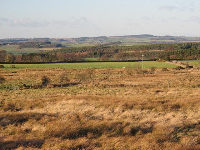 Farmland east of Healey Riggend