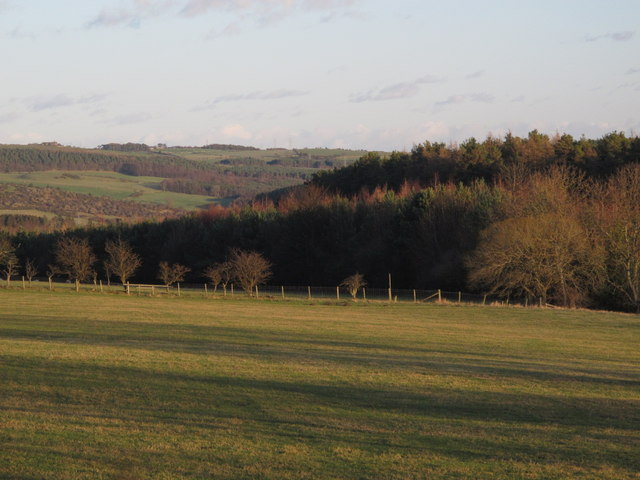 Farmland and Long Wood near Scales Cross