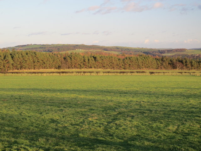 Farmland south of Fotherley Gill
