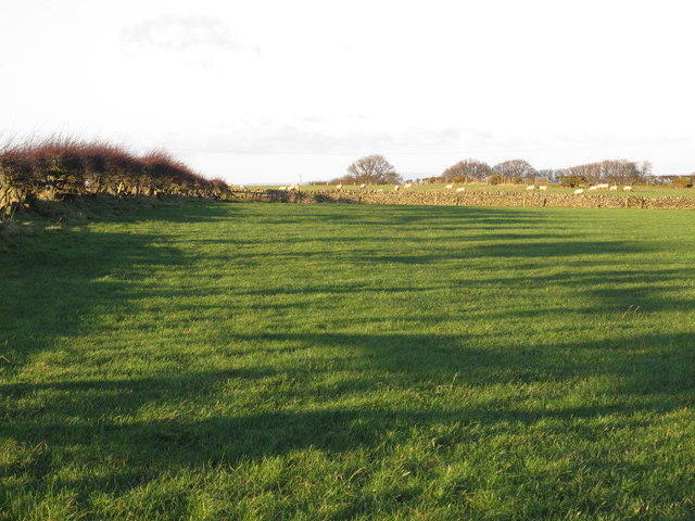 Farmland southwest of Low Fotherley