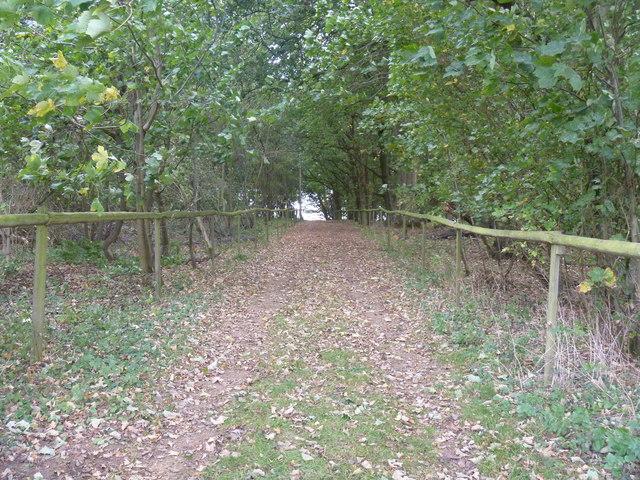 Bridleway to Enstone [7]