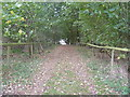 SP3625 : Bridleway to Enstone [7] by Michael Dibb