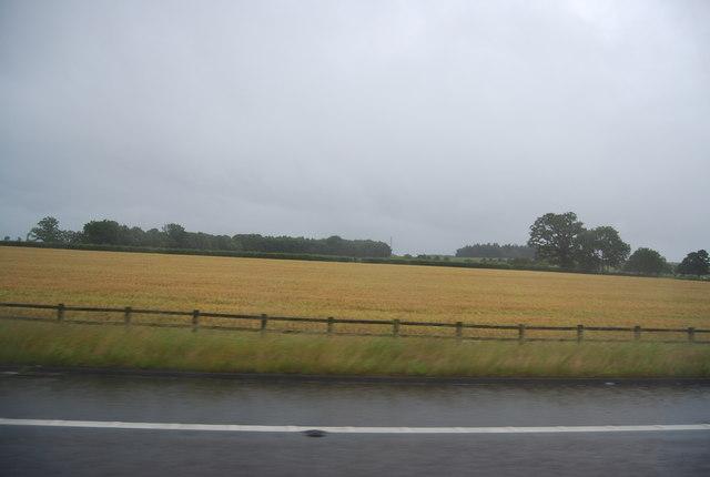 Farmland by the M6