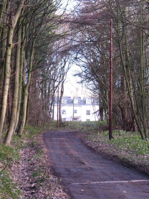 Woodhouse Lane, Pocklington Wood