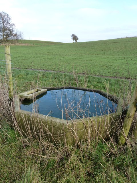 Cattle drinking trough near Preese Hall