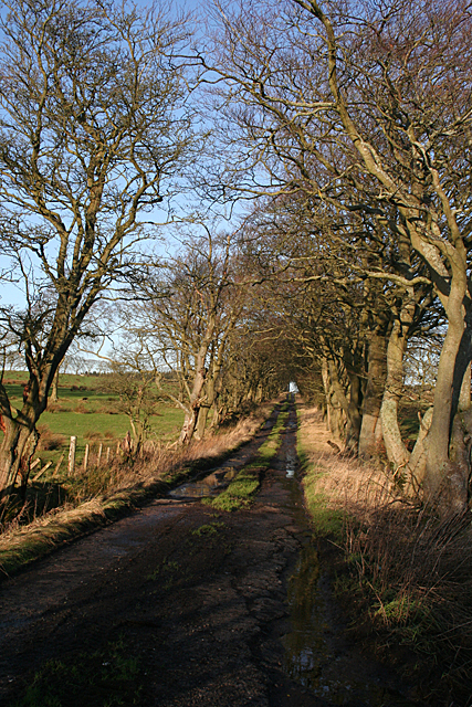 Leadloch Farm Road