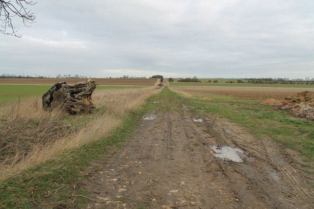 Track off Stow Lane