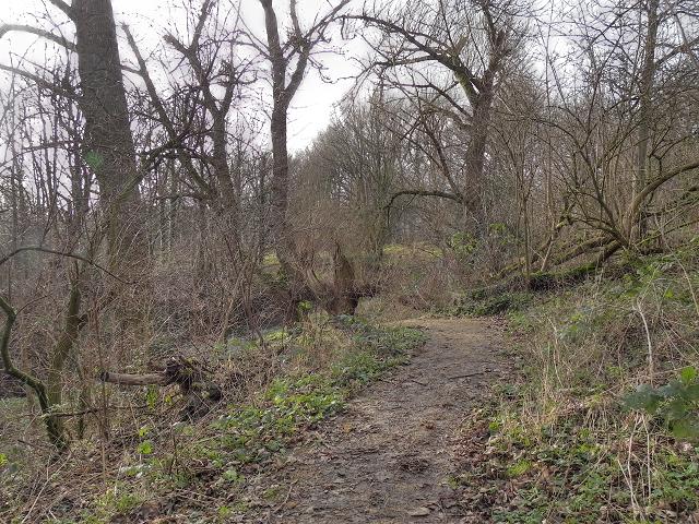 Path Through Hough End Clough