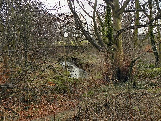 Hough End Clough, Red Lion Brook