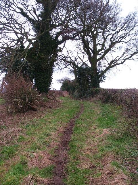 Guncroft Lane