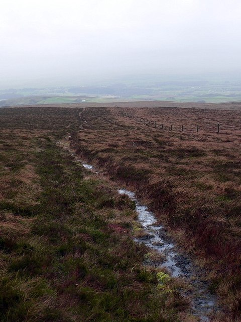 Wet path west of Cold Fell